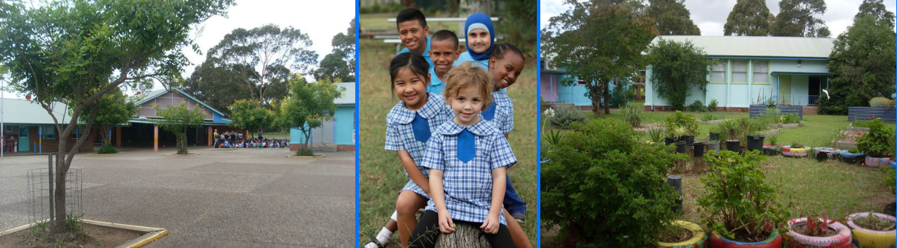 collage of front of school, garden and students